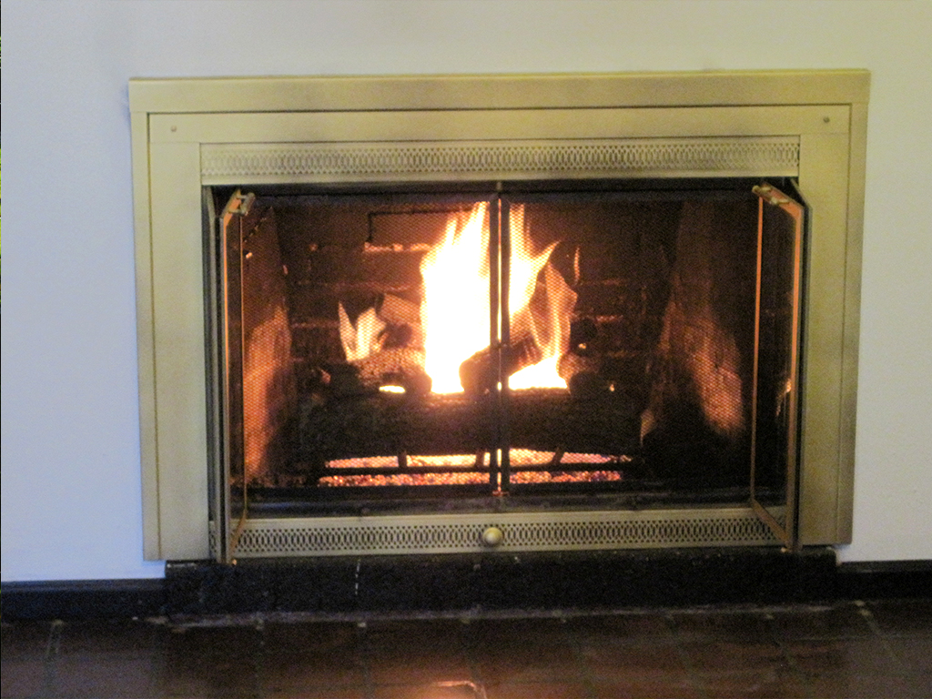 Gas Fireplace Log Inserts Images Gas Log Gas Log Fireplace Insert Regarding Cozy Living Room